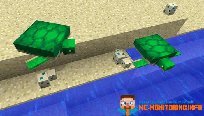 Детеныши черепах