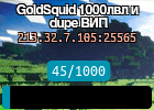 GoldSquid 1000лвл и dupe ВИП